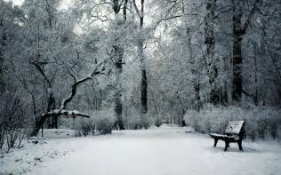 winter images winter day in the park wallpaper 1205631