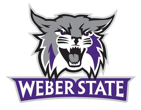 Weber State Mba Shirt by Weber State Wildcats Large Logo Decal Ebay