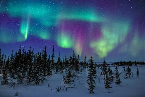how do the northern lights last arctic nights and the colors of the northern lights