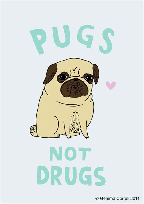pugs not drugs poster pugs not drugs poster print illustration graphic graphics prints paintings