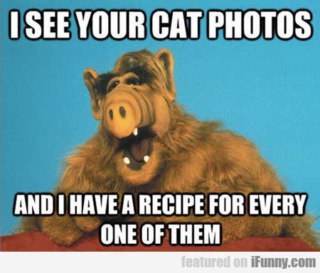 Alf Meme - funny cat eating alf quotes quotesgram