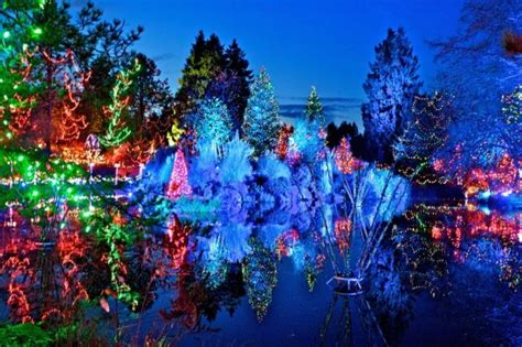 vandusen botanical garden festival of lights vancouver new year s top events inside vancouver