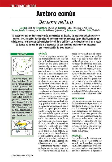 libro rojo de las aves de espa 241 aves amenazadas de espa 241 a lynx edicions