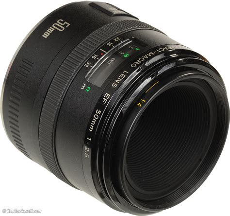 macro lens canon 50mm macro