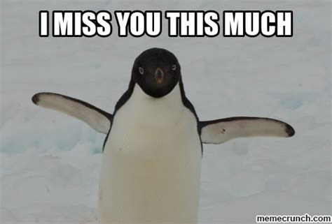 I Love You This Much Meme - the gallery for gt i miss you meme funny