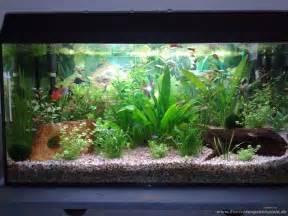 aquarium terrasse rammsteinfan86 gesellschaftsbecken mit terasse