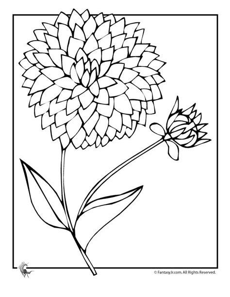 zinnia flower coloring page zinnia flower coloring pages sketch coloring page