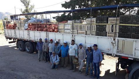 cadena de valor hortalizas aramark con la cadena de valor minera env 237 a hortalizas