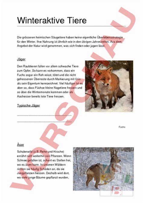 überwachungskamera für tiere www unterrichtsmaterial ch biologie verhalten