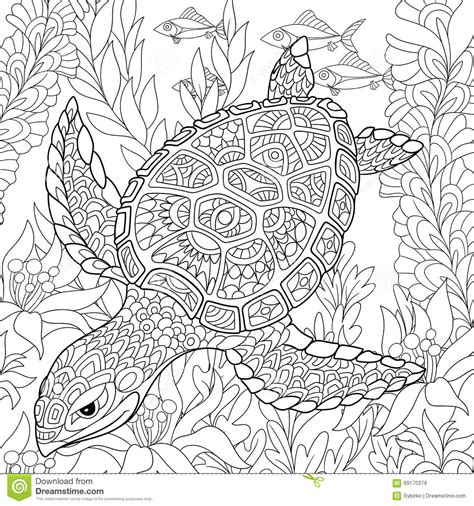 hard coloring pages ocean zentangle stylized turtle stock vector illustration of