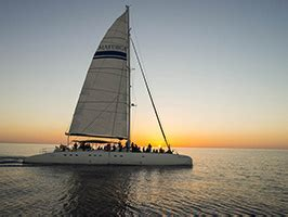 catamaran excursion sunrise and dolphins in cala ratjada dolphins excursions 224 majorque justbookexcursions