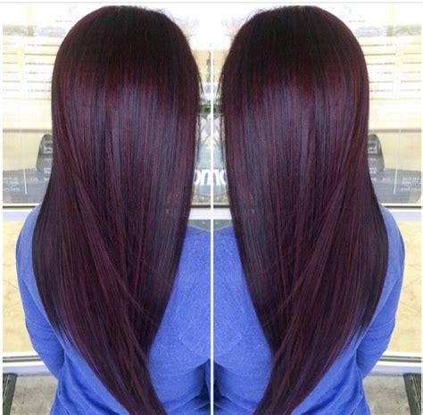 chocolate plum hair color plum brown paul mitchell trends plum pinterest