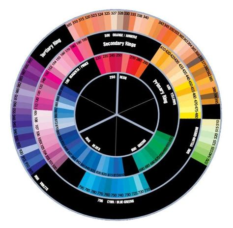 color wheel with names 82 best color wheel and color names images on
