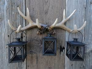 deer antler decorating ideas 1000 ideas about deer antler crafts on antler
