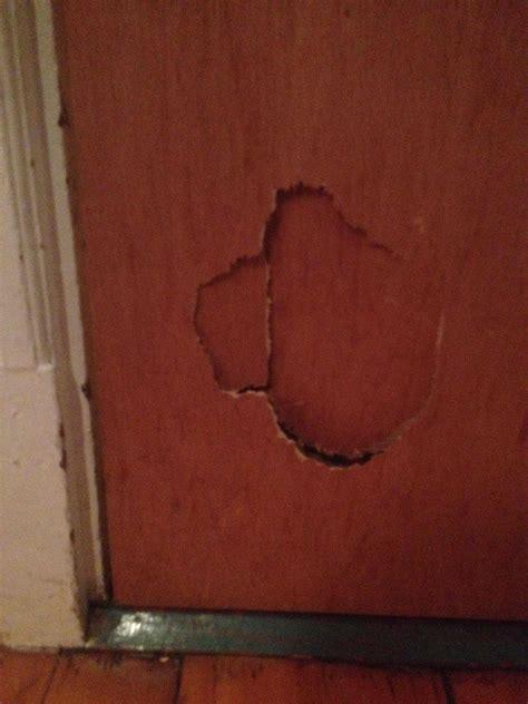 how to fix doors how to fix a cracked center of a hollow wooden door