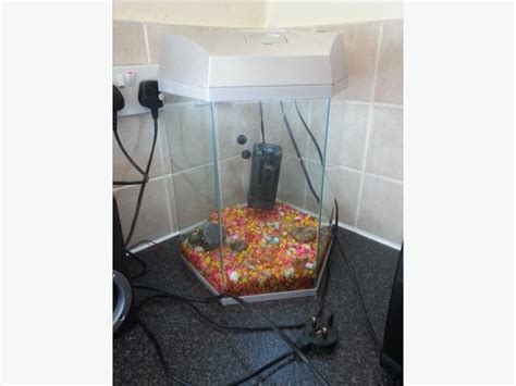 fish tank with filter and light hexagon fish tank with light and filter in the way need