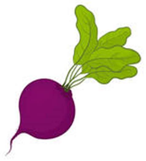 beet clipart beet stock illustrations gograph