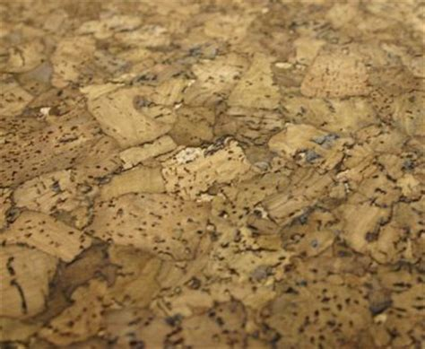 top 28 cork flooring za african cork suppliers 5 flooring trends we love sa garden and