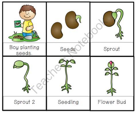 let s plant seeds printable preschool printables