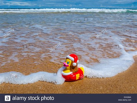 southern hemisphere summer christmas xmas rubber duck at