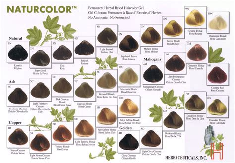 perfect 10 hair color chart clairol brown hair color chart hairstylegalleries com
