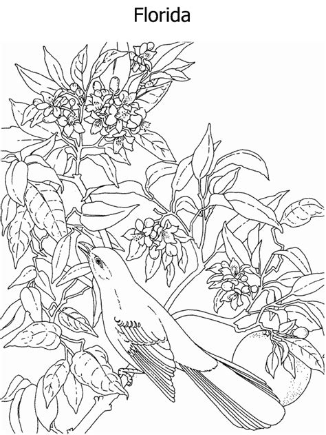 coloring pages intricate flowers free intricate coloring pages coloring home