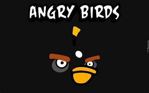 czarny ptak bomba