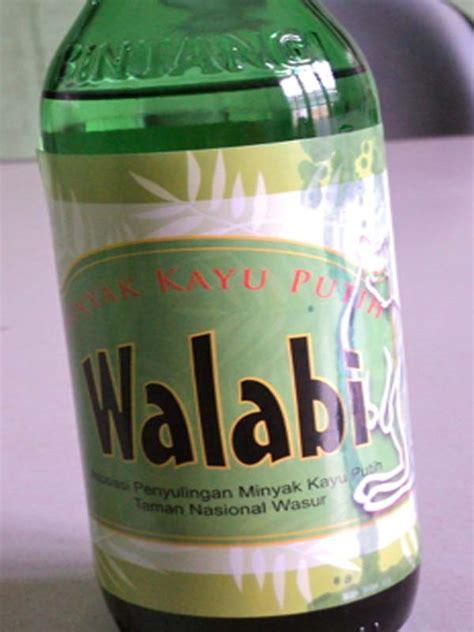 Minyak Kayu Putih Yang Kecil walabi minyak kayu putih dari taman nasional wasur