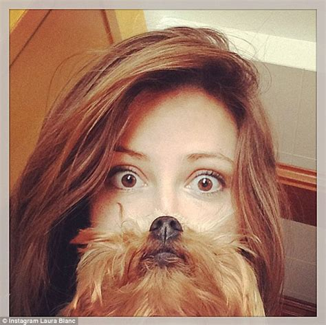 dogs with beards are beards the new cat beards pet owners create canine meme