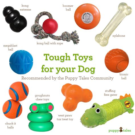 toys for puppies tips for new owners ingold s