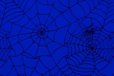 pattern web background generator free illustration spiders spiderweb cobweb free image