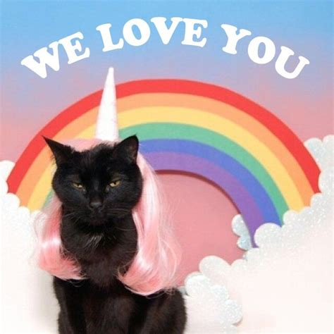 we love you more than cats dressed like unicorns in pink