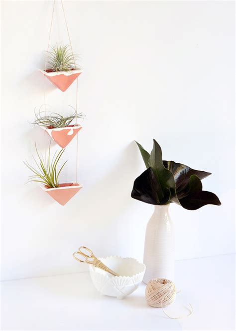Air Plant Wall Holder by Diy Clay Hanging Air Plant Holders Squirrelly Minds