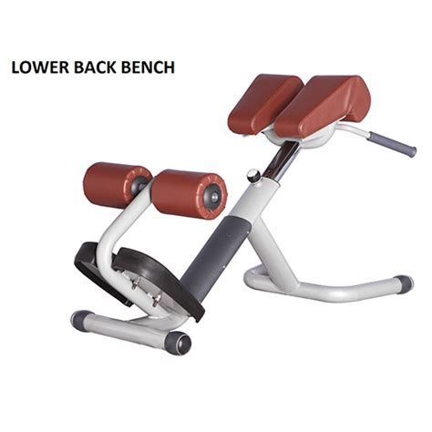 lower back exercise bench x fitness dubai