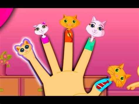 finger family cat family nursery rhyme kids