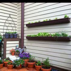 living in the gutter with 20 best diy gutter gardens images gutter garden edible