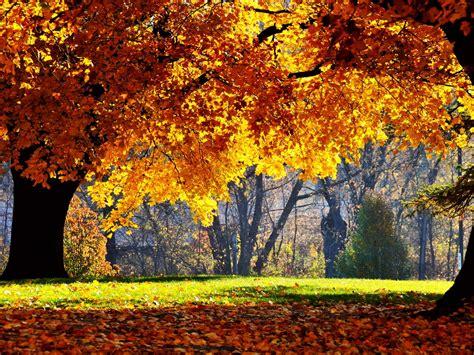Autumn Season Wallpapers 4 Fall Nature Wallpaper