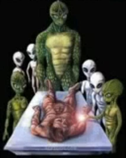 the royal family david icke and the reptiles merovee the reptilian conspiracy theory conspiracytheoryblogger