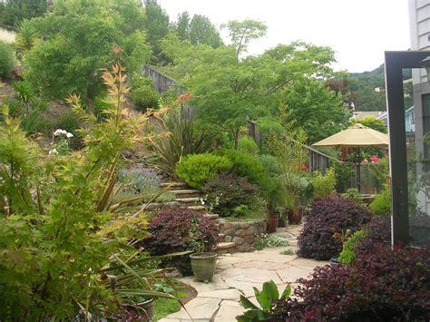 backyard on a slope backyard slope