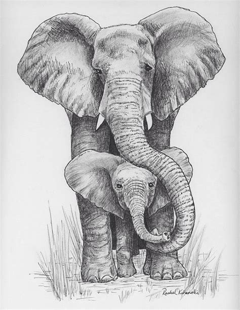 Big 5 Sketches by Pen And Ink Drawing Of And Baby Elephant Print
