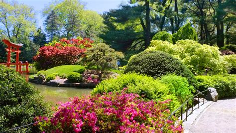 Brooklyn Botanic Garden Botanic Garden In New York City Botanical Garden In
