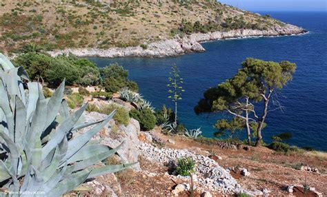 Narrow Kitchen Island Dubovica Island Hvar Villa Benedeta