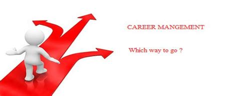 Samples Of Objectives For A Resume by Career Management Business Article Mba Skool Study