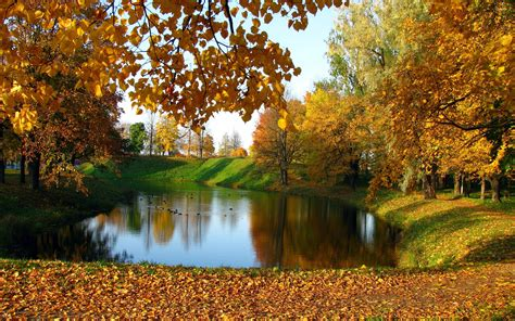 autumn garden lake in the autumn garden wallpaper nature wallpapers