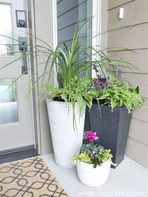 chic spring planters  beautiful flower