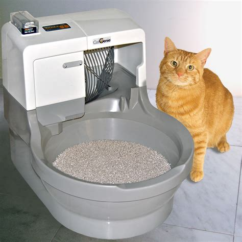 best litter best self cleaning litter box a comparison cat concerns