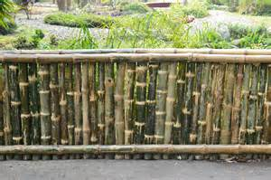 file bamboo fence agri horticultural society of india