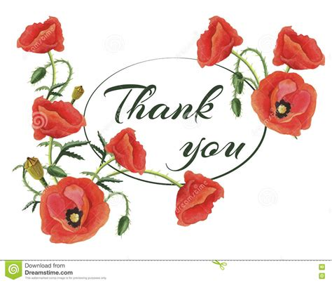 Greeting Card Thank You With Poppies Stock Vector   Image