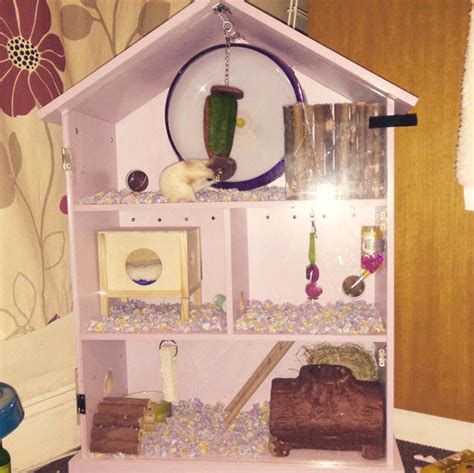 hamster doll house diy dollhouse hamster cage petdiys com