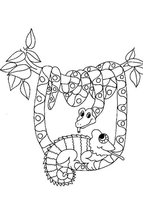 ausmalbilder schlangen  ausmalbilder tiere